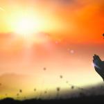 Principios bíblicos para experimentar el poder de Dios