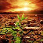 Es tiempo de revisar si hemos sido buena tierra para una semilla