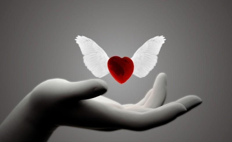 Decídase a perdonar y libere su corazón