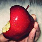 Aprendiendo de los errores de Adán y Eva para ser buenos padres