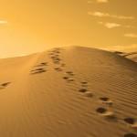 desierto, salvación, huellas